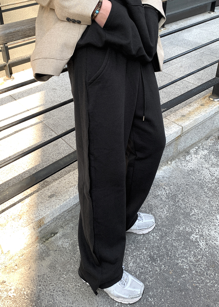 wing cutting wide pants(2 color)